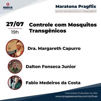 Maratona Pragflix - Controle com Mosquitos Transgênicos